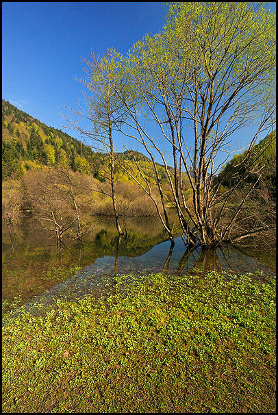 Lac de Kruth, Wildenstein, Haut-Rhin, Alsace, France