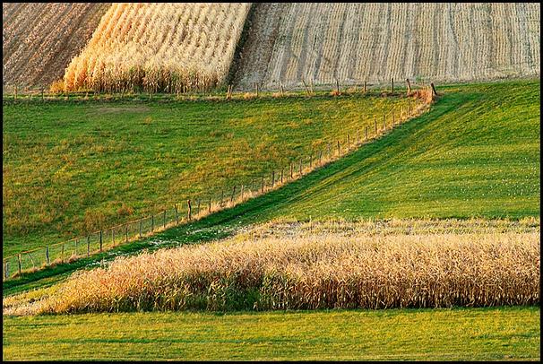 Graphisme au Pays de Hanau