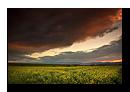 Paysages d'Alsace-Vosges - Printemps-Eté