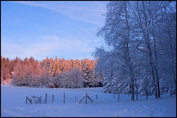 Coucher de la soleil hivernal sur la F�ret Noire en Allemagne