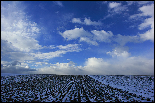 Champs en hiver, Bas-Rhin, Alsace