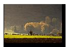Lueur d'automne aux environs de Neuwiller-Les-Savernes