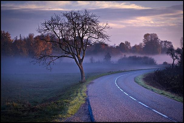Petit matin automnal entre Weitbruch et Brumath