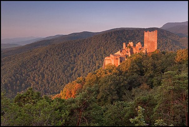 Chateau Saint-Ulrich au petit matin, Ribeauvillé, Haut-Rhin, Alsace, France