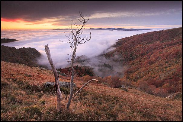 Mer de nuages sur le Kastelberg dans les Vosges, Hohneck, Haut-Rhin, Alsace, France