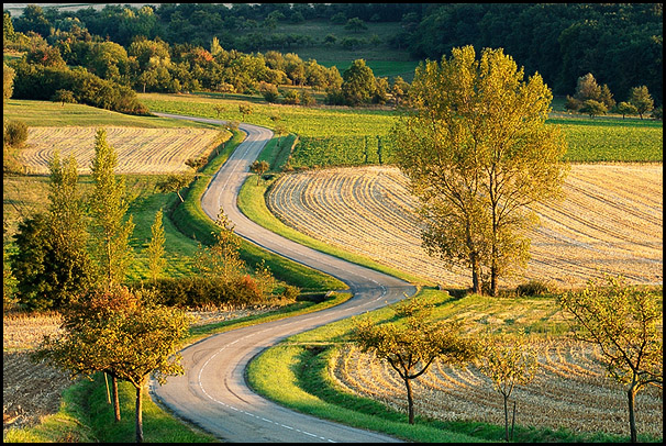 Route sinueuse, Pays de Hanau, Bas-Rhin, Alsace, France