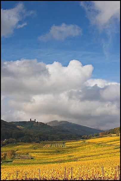 Chateau d'Andlau au dessus des vignes