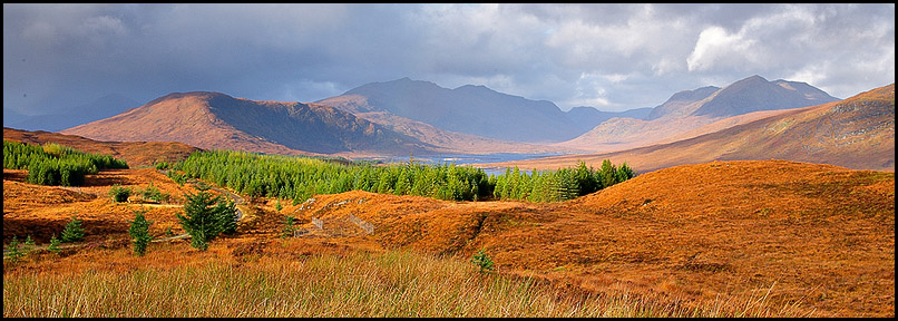 Near Loch Loyne, Highlands, Scotland