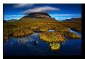 Bog, Buachaille Etive Mor, Rannoch Moor, Glencoe, Scotland