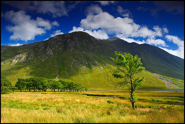 Glen Etive road, Near Invercharnan, Kinlochetive, Scotland